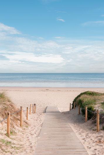 Camino a la playa - Relax