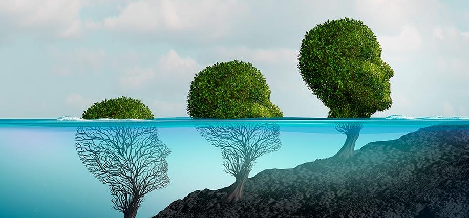Las diferentes áreas de la psicología